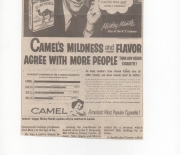 1976 newspaper reprint ad