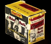 mickey-mantle-rawlings-mm6-the-comet-1-box-jerry_595