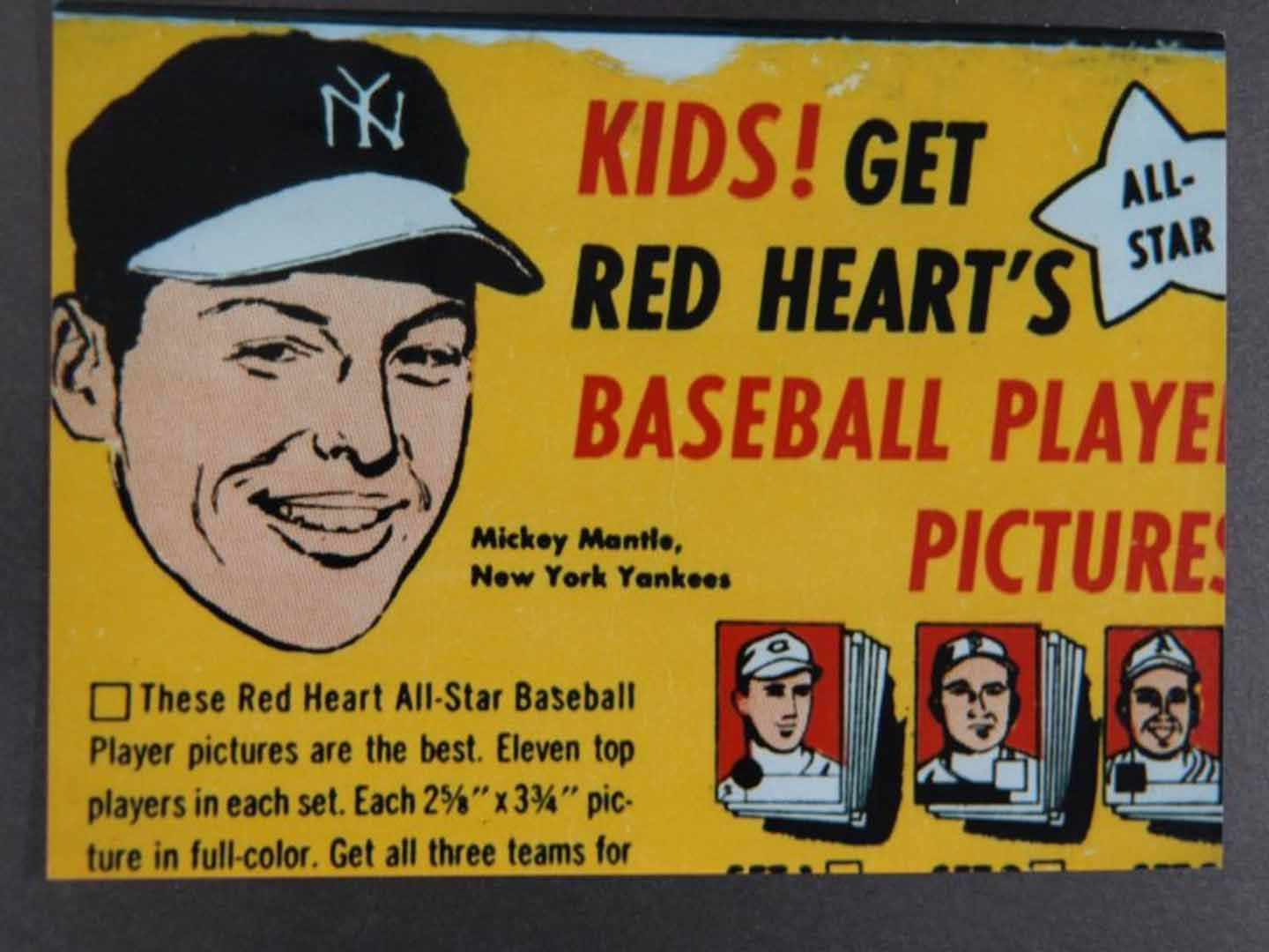 1954-1955 red heart dog food