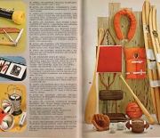 1967 raleigh belair premium catalog